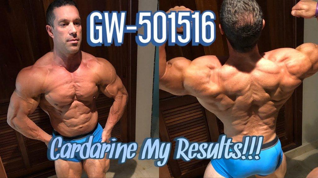 cardarine results