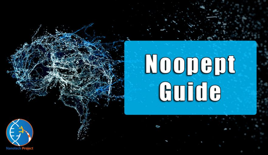 noopept guide