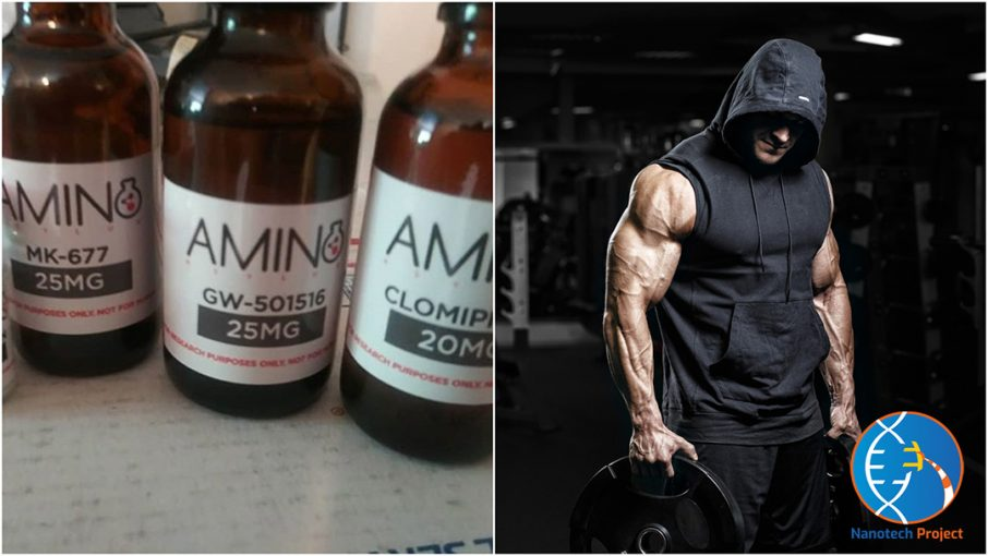 amino asylum review guide
