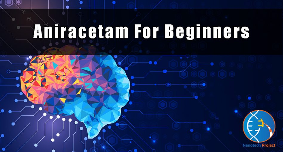 aniracetam guide